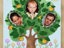 Изучение своей родословной